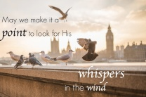 Loook for HIS Whispers