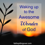 Wonder Of GOD